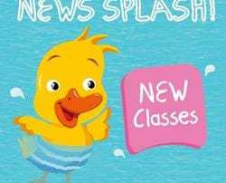 New Classes for 2017!