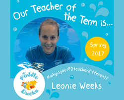 Teacher of the Term Competition - Spring 2017