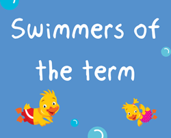 Stars of the term - Summer 2018