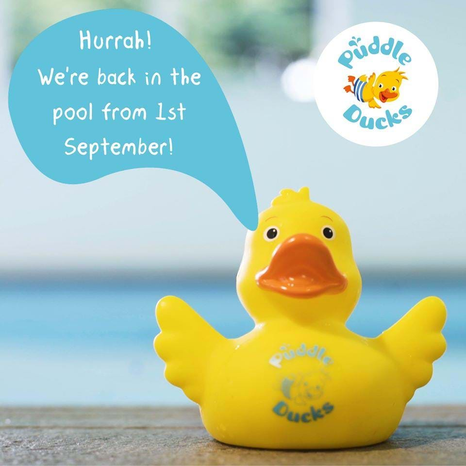 Update - Puddle Ducks Classes Back from the 1st September 2020!