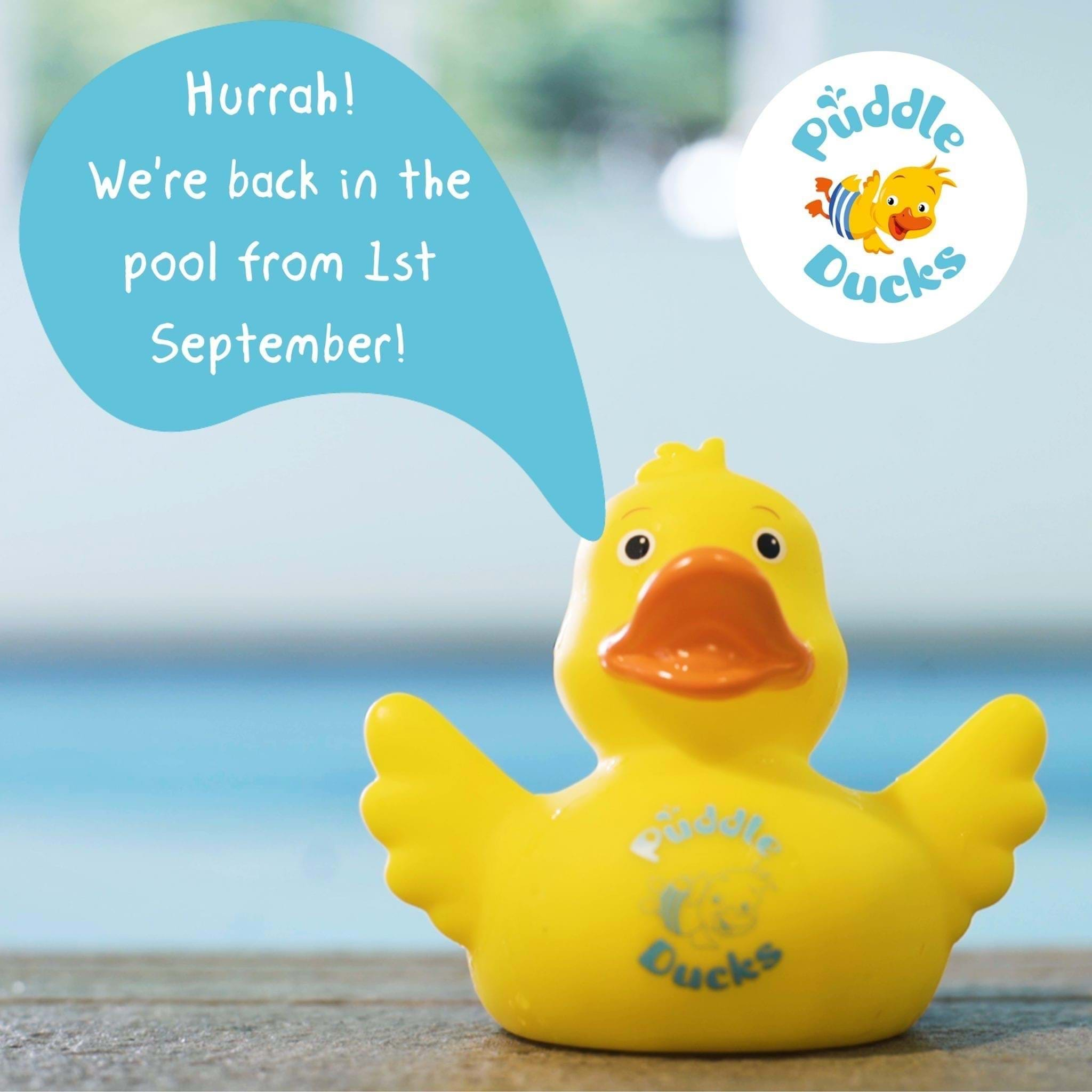 Puddle Ducks IS BACK!